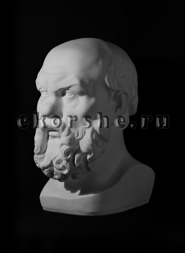 Голова Сократа